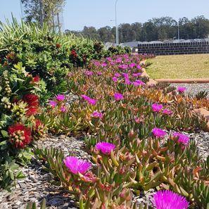 landscape with public garden
